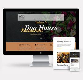 Branding & Website